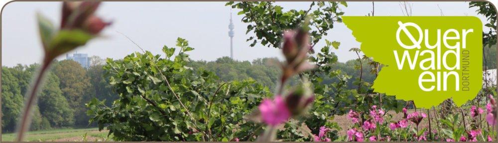 Querwaldein Dortmund